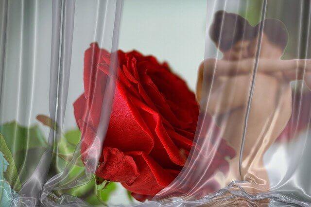 バラの花の奥で抱き合う男性と女性