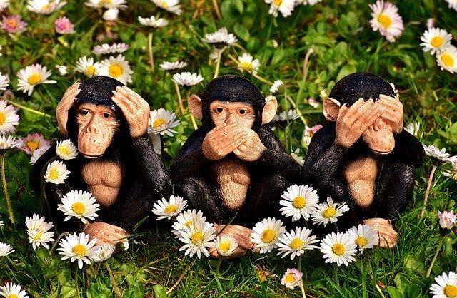 花に囲まれた3匹のチンパンジーの置物